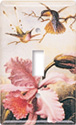 Heade: Orchids & Hummingbirds Switch Plate