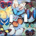 Butterflies on Blue Switch Plate
