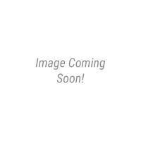 Shell Collection Coffee Mug